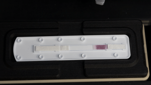 Lateral flow test strip with gold nanoparticles